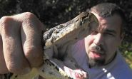 FWC offers training sessions for potential python hunters